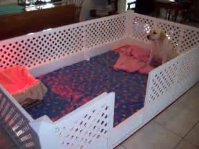 Whelping Box Bedding Best 25 Whelping Box Ideas On Doggie Play Pen And Puppy Play
