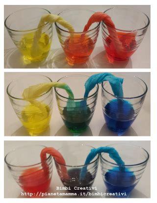colorante alimentare giallo esperimento per bambini l acqua cammina bimbi creativi