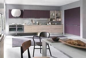 Couleur pour cuisine 105 idees de peinture murale et for Quelle couleur associer avec du gris 19 images darmoires de cuisine moderne
