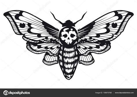 tete de mort sphinx image vectorielle vecster