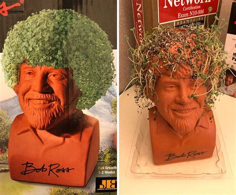 I Bought This Bob Ross Chia Pet... These Are Not Happy
