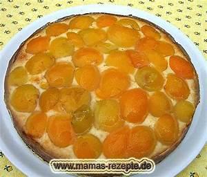 Mamas Rezepte : aprikosen kuchen in springform ~ Pilothousefishingboats.com Haus und Dekorationen