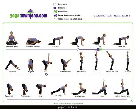 senior sweat on pinterest chair yoga chair exercises and