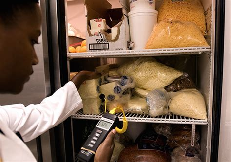 Important Restaurant Food Storage Safety Tips You Need to ...