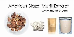 Препарат для лечения печени и поджелудочной железы