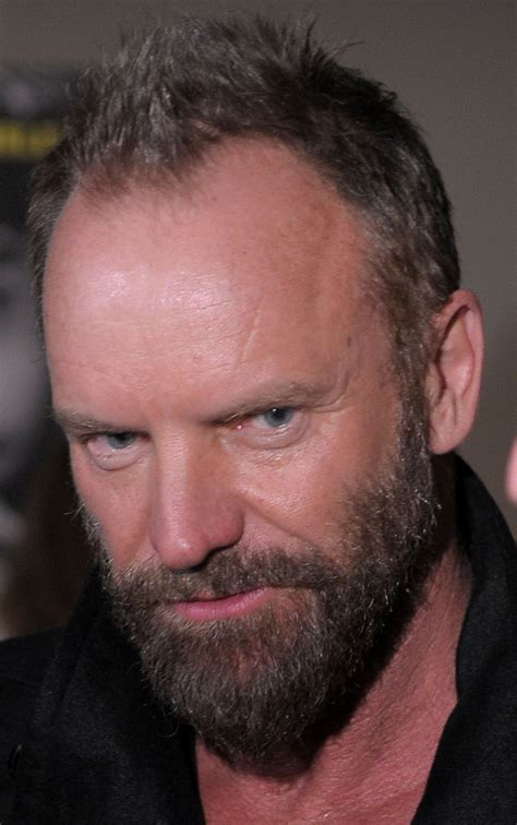 sting  big picture huffpost