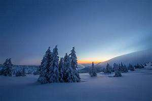 Dark, Nature, Trees, Snow, Landscape, Wallpapers, Hd, Desktop, And, Mobile, Backgrounds