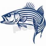 Bass Fish Clipart Striped Silhouette Fishing Stripe