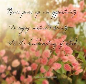 Quotes About Natures Beauty. QuotesGram