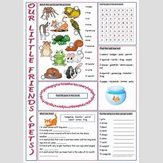 Pets #3 (vocabulary Exercises) Worksheet  Free Esl Printable Worksheets Made By Teachers