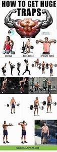 8 Trap Workouts For Men At The Gym For Bodybuilding  Trapsworkout