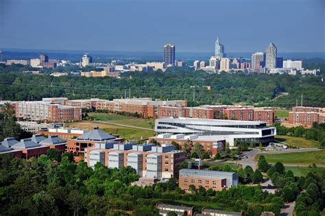 degree studies nc state university