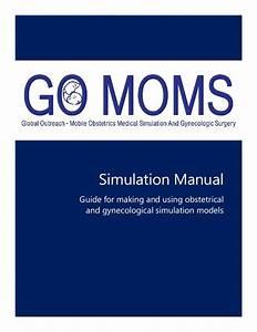 Go Moms Simulation Manual