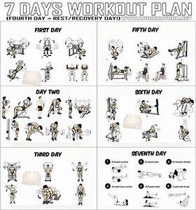 7 Days Workout Plan - Full Body Fitness Training Leg Arm Back Ab - Project Next