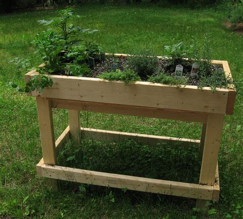 raised herb bed flickr photo