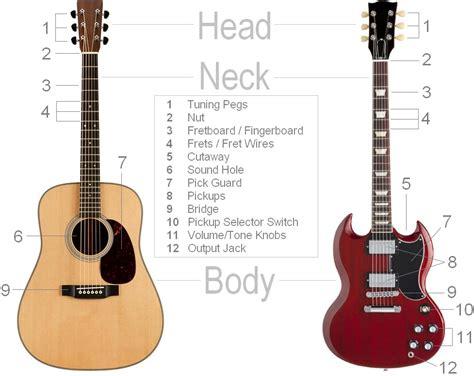 parts   guitar clearest guitar parts diagram