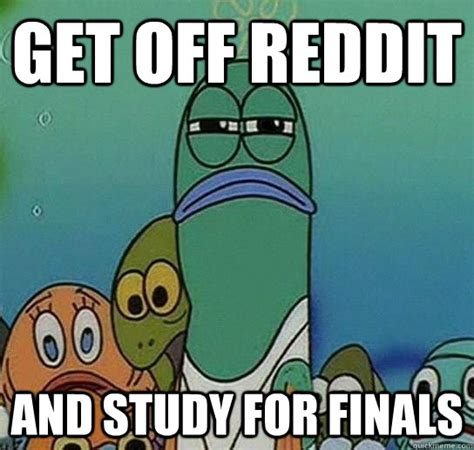 Spongebob Memes Reddit - get off reddit and study for finals serious fish spongebob quickmeme