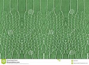 Crocodile Skin Stock Photos - Image: 30270873