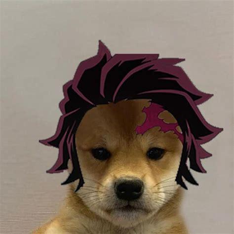 dogojiro dogwifhat   anime reccomendations cute
