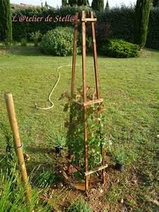 Support Plantes Grimpantes : tuteur pour plante grimpante ~ Dode.kayakingforconservation.com Idées de Décoration