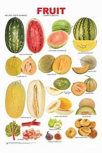 VEGETABLES AND FRUIT LIST NAMES on Pinterest | Vegetables ...