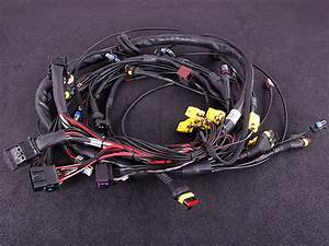 Terminated Engine Harness  Iv Including