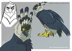 Harpy Eagle concepts by TerminAitor on DeviantArt