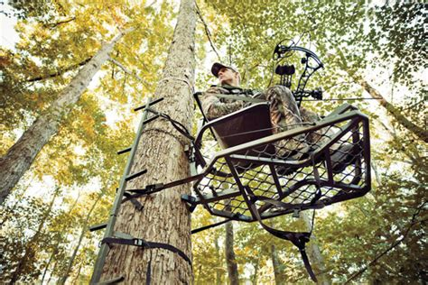 Fpo Stands For by Shot Placement For Treestand Bowhunters