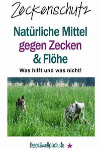Flöhe Hund Mensch : nat rliche mittel gegen zecken und fl he blogposts the pell mell pack pinterest fl he ~ Yasmunasinghe.com Haus und Dekorationen