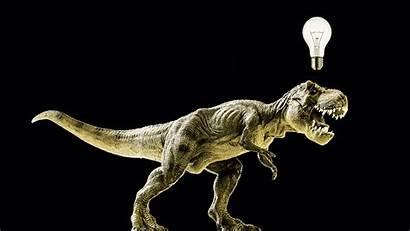 Rex Smart Brain Tyrannosaurus Beast Research Dinosaur
