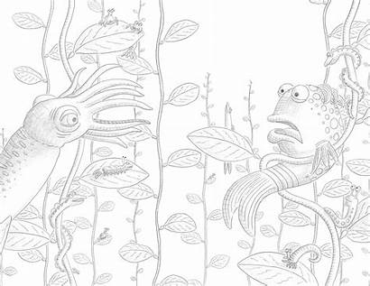 Pout Fish Coloring Pages Dark Squid Popular