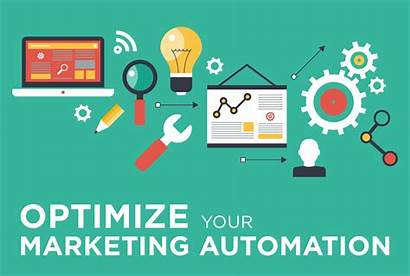 Automation Marketing Articles Software