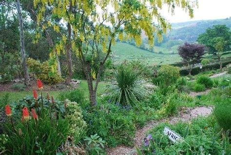 Plant World Gardens (newton Abbot)
