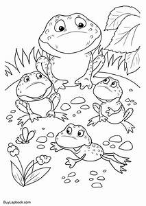The Life Cycle of a Frog. Free Coloring Pages – BuyLapbook