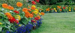 Seasonal Color Plantings