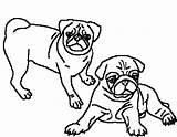 Pug Coloring Pages Puppy Pugs Print Adult Printable Clipart Dog Pig Drawing Clipartbest Sheets Getdrawings Stained Glass Embroidery Drawings Cup sketch template