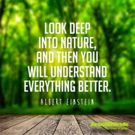 1000+ Images About Quotes On Pinterest  John Muir