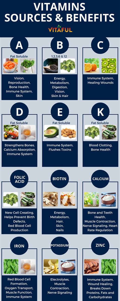 The 25+ Best Vitamin K Ideas On Pinterest  Vitamin K
