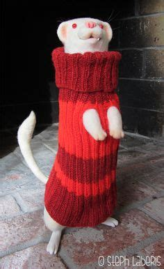 ferret sweaters the of steph laberis i decided to being one of my