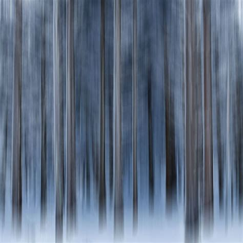 trees icm trees winter blue abstract white lines