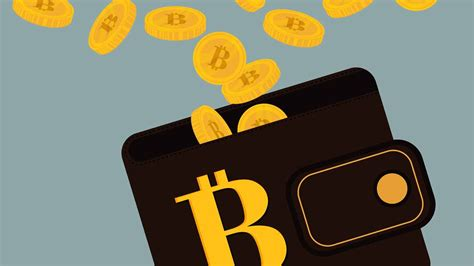 my bitcoin wallet 10 best bitcoin wallets with low transaction fees