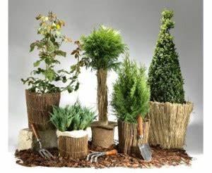 Bambus Vernichten Tipps : garten winterfest machen tipps und tricks bambus discount ~ Whattoseeinmadrid.com Haus und Dekorationen
