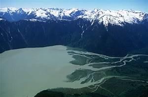 What is an Estuary? - Estuary Biome