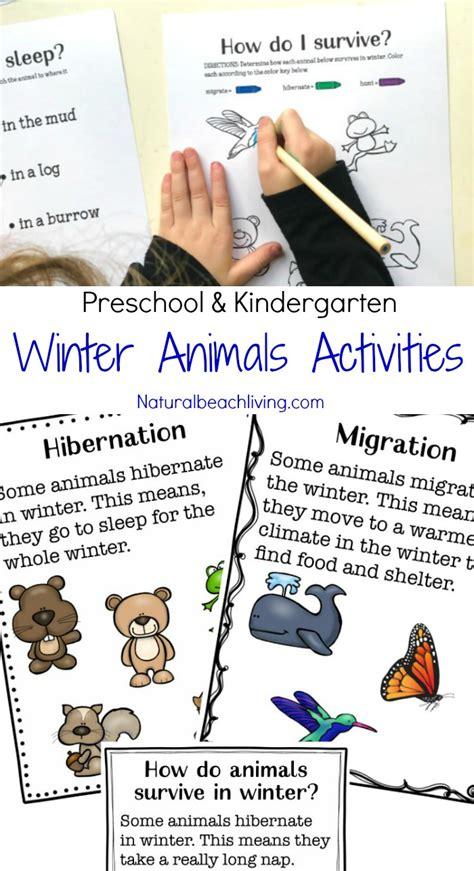 winter animals for preschool activities living 682 | winter animals for preschool pin2