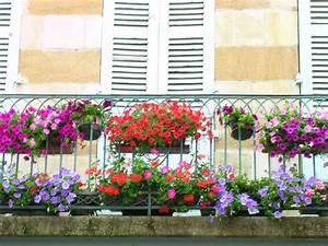 Bac A Fleur Balcon : fleur balcon ~ Teatrodelosmanantiales.com Idées de Décoration