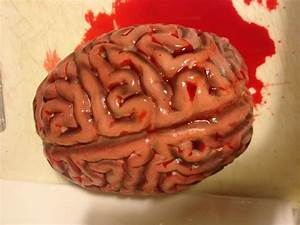 Halloween Human Brain Prop Decoration Realistic Life Size ...