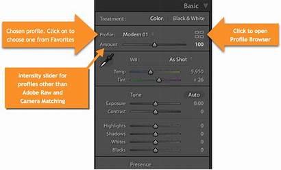 Lightroom Profiles Classic Panel Profile Basic Cc