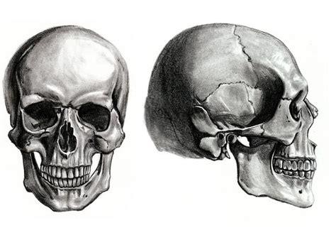 Learn Skull Memorize Remember