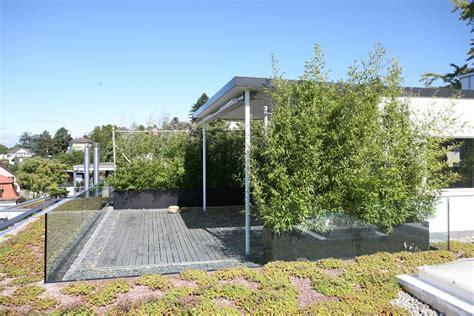 Pflanzen Für Dachterrasse by Dachterrasse Anlegen Und Gestalten Egli Garten Ag