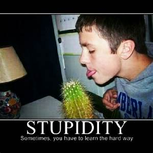 #GoodMorning #iGers & #iG! :) #Stupidity: Sonetimes you ha ...
